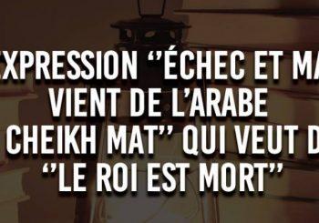 les 500 mots français d'origine arabe